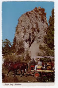 Sugar Loaf Vintage Postcard
